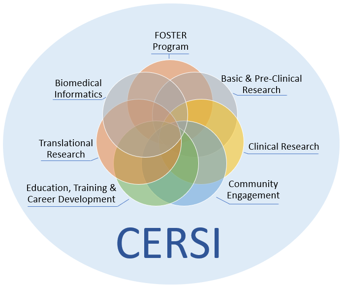 CERSI Areas of Focus