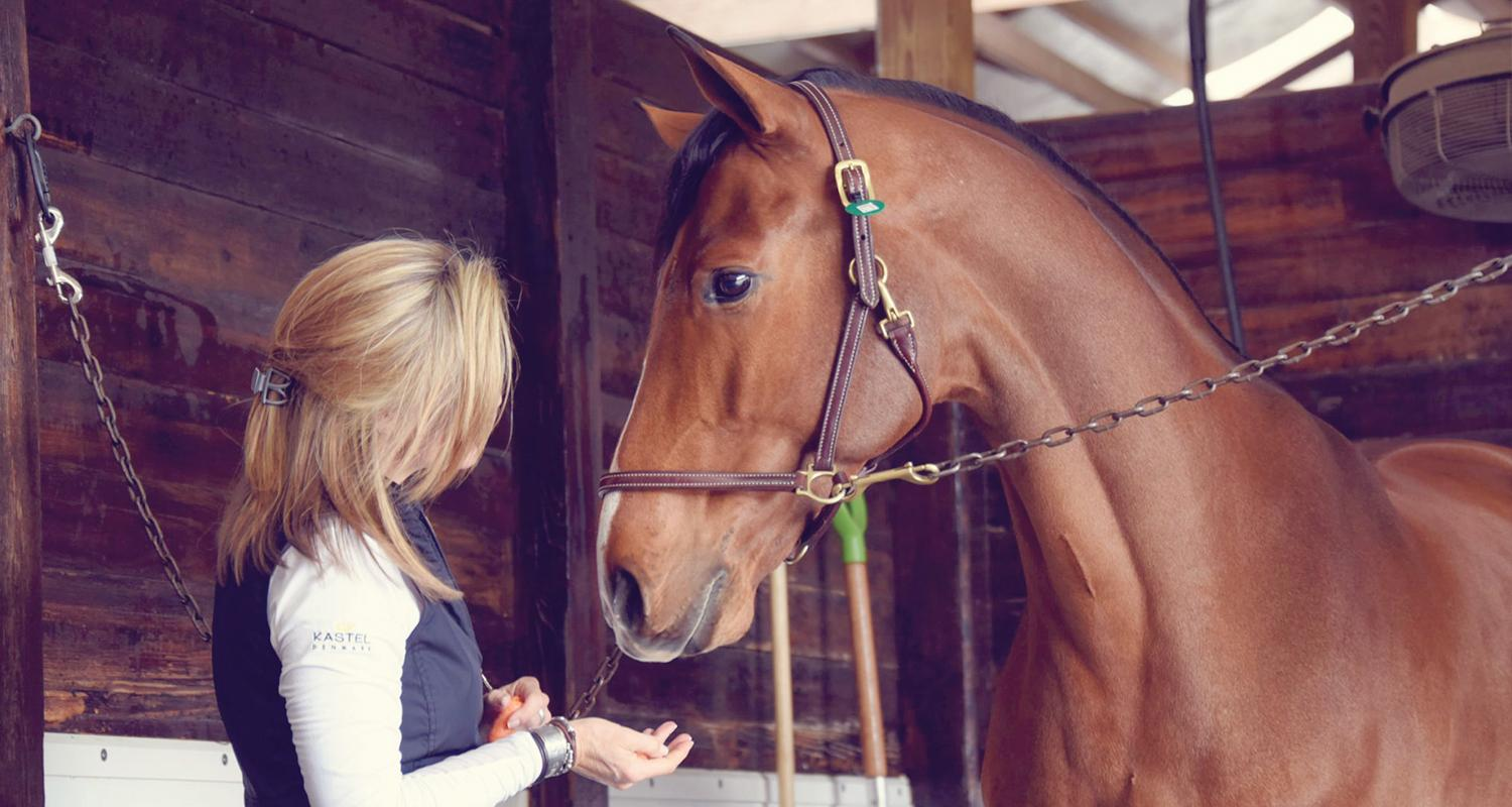 Experience the equestrian life in Aiken where polo matches and horse races are a way of life.