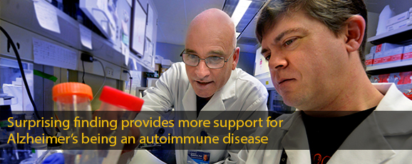 Surprising finding provides more support for Alzheimer's being an autoimmune disease